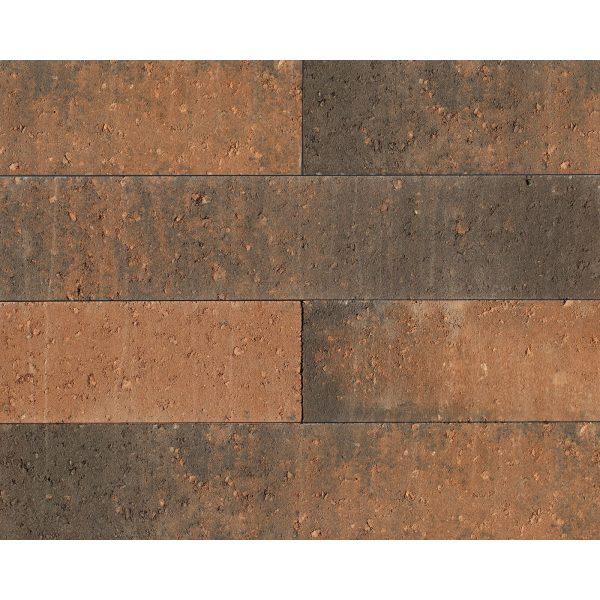 Z0000683 - Wallblock New 60x12x12 cm Texels bont - Alpha Sierbestrating