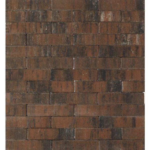 Z0005724 - Tremico waalformaat 20x5x6 cm Texels bont - Alpha Sierbestrating